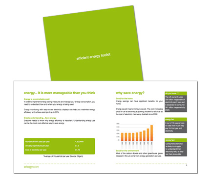 Efergy Brochure Design